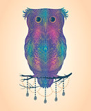 Vector colorful hand drawn Owl sitting on branch