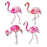 Hand drawn sketch pink flamingo vector set.