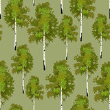 Seamless pattern birch tree in springtime
