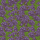 Vintage Blackberry Seamless Pattern