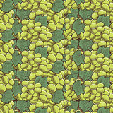 Vintage Green Grapes Seamless Pattern