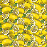 Vintage Lemon Seamless Pattern