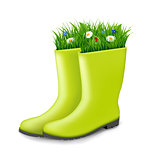 Gumboots With Grass