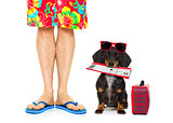 two on summer  vacation, dog and owner