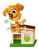 Funny yellow puppy sitting on doghouse and tearing off petal of chamomile
