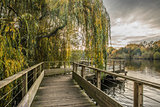 Wood footbridge on the Erdre river