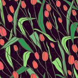Seamless pattern with spring flowers/Red and orange tulips