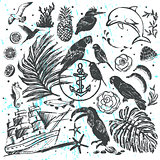 Ink hand drawn vector elements All about Tropical Sea Vacations