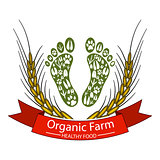Organic farm-Healthy food