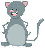 kitten pet character
