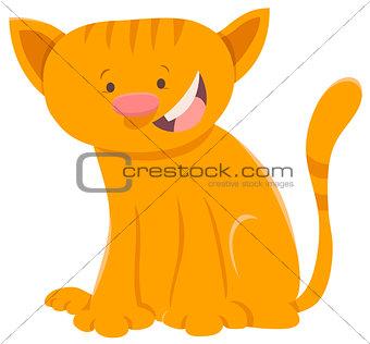 kitten animal character