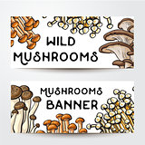 Banner design with various edible mushrooms and place for text