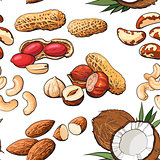 Seamless pattern of various nuts on white background,