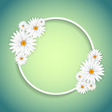 Decorative daisy frame