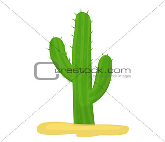 Cactus icon flat, cartoon style isolated on white background. Vector illustration, clip art.