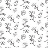 Chamomile outline seamless floral pattern.