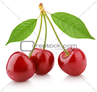 Three cherry berry with leaves isolated on white