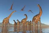 Cretaceous Argentinosaurus Herd