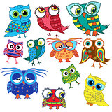 Eleven cartoon amusing owls