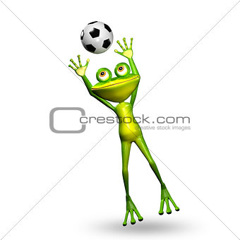 3D Illustration Frog with a Soccer Ball