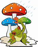 Mushroom and toad
