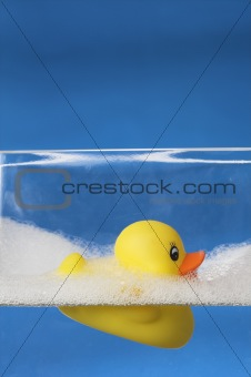 floating rubber duck