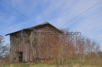 Old Tobacco Barn