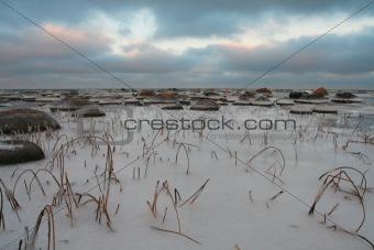 Costline with icy stones