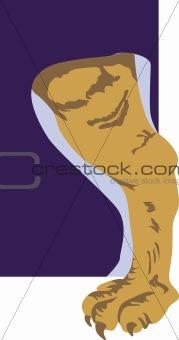A muscular leg