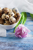 Quail eggs in bowl purple rose tulip and gauze