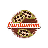Cardamom Spice. Vector Illustration.