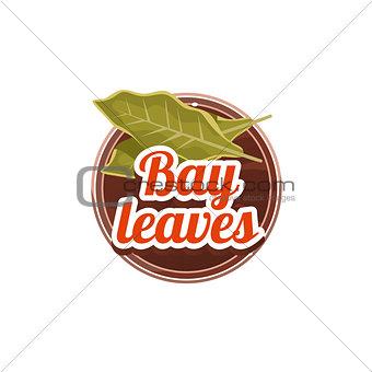 Bay Leaves Spice. Vector Illustration.
