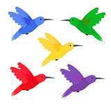 Set five small colorful bird hummingbird