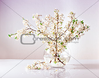 branches of a blossoming apple tree in a glass vase with water