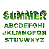 Summer green alphabet, capital vector tropical letters
