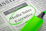 Media Sales Executive Wanted. 3d.
