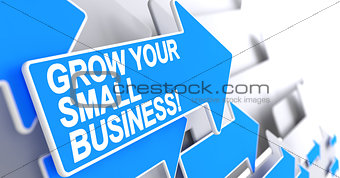 Grow Your Small Business - Label on Blue Arrow. 3D.