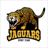 jaguar mascot - emblem for sport team
