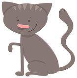 kitten or cat character