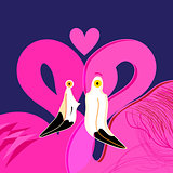 Bright portraits of pink lovers of flamingos
