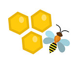 Honeycomb and bee icon, flat style. Isolated on white background. Vector illustration, clip-art.