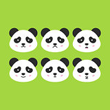 Emotional Panda Faces