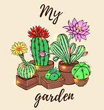 Ð¡actus in a flowerpot.