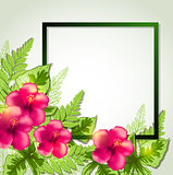 Summer frame with red flowers
