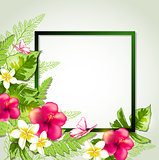 Summer tropical frame