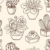 Pattern with houseplants