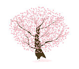 Abstract Floral Sakura Flower Japanese Tree Natural Background V