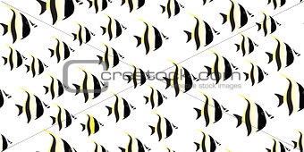 fish seamless isolated