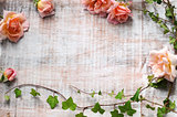 floral frame of beautiful roses