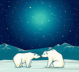 Two polar bear and night starry sky.
